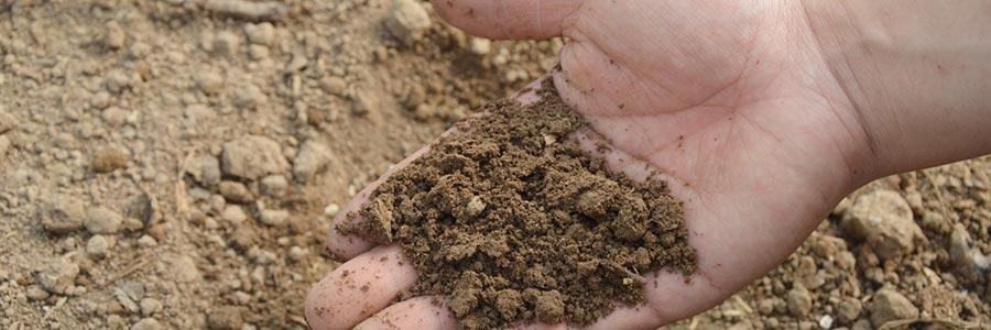 Fertilizzanti naturali con Microrganismi