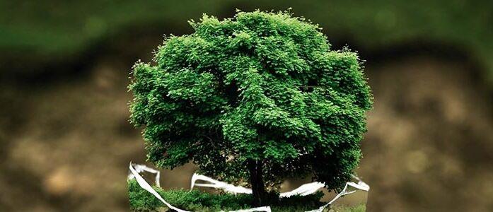 Agricoltura bio Sostenibile