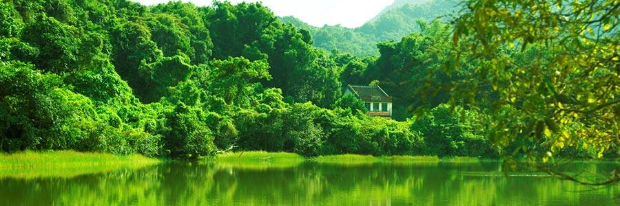 Rivoluzione Verde Microrganismi