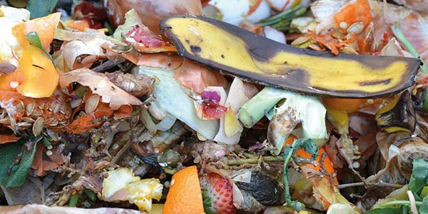 compostaggio-domestico