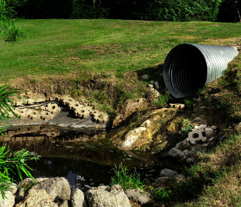 microrganismi-depurazione-acque
