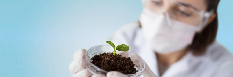 microrganismi in agricoltura