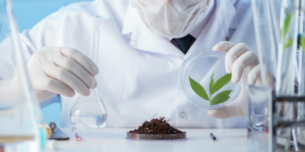 studi-microrganismi-efferttivi-agricoltura