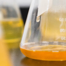 chimica e tossicità sulla salute