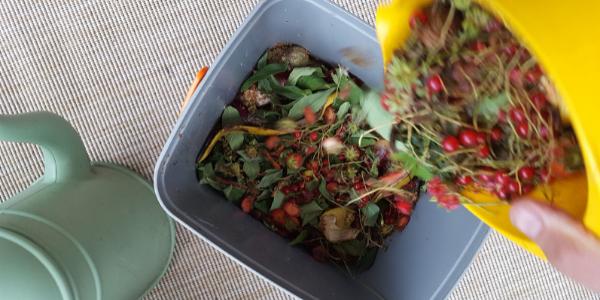 scarti organici per creare bokashi