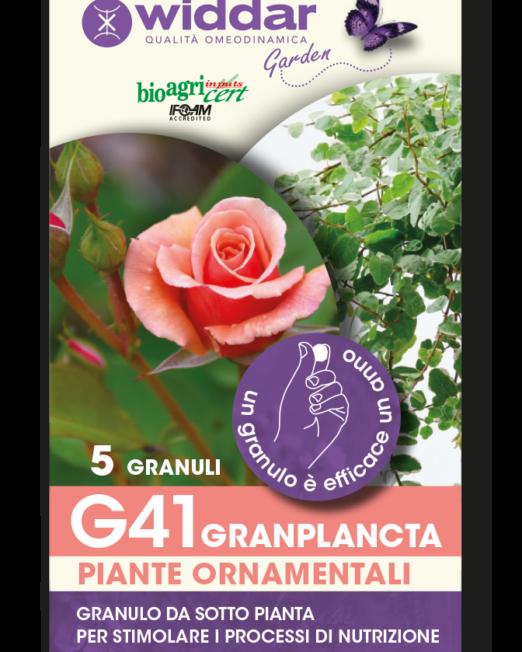 G41-5-GRANULI in argilla espansa trinium