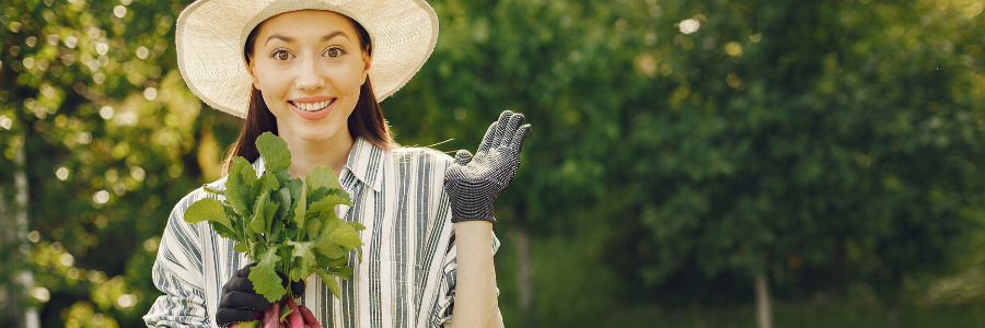 cosa piantare in orto a settembre
