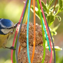 nutrire gli uccellini dìinverno